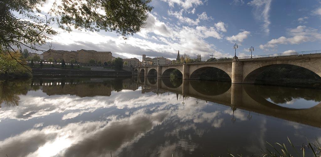SEO en Logroño